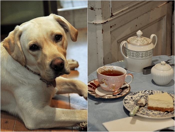 salon de thé Snob