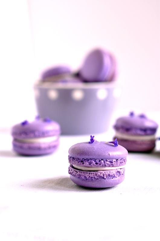 macarons lavande