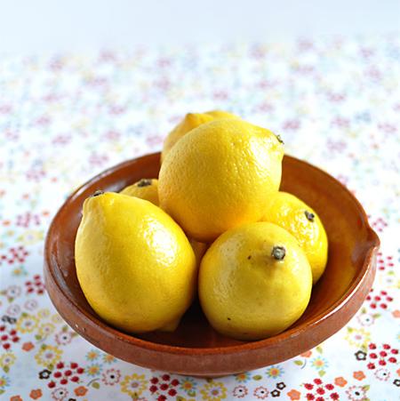 sorbet-citron-bergamote_00