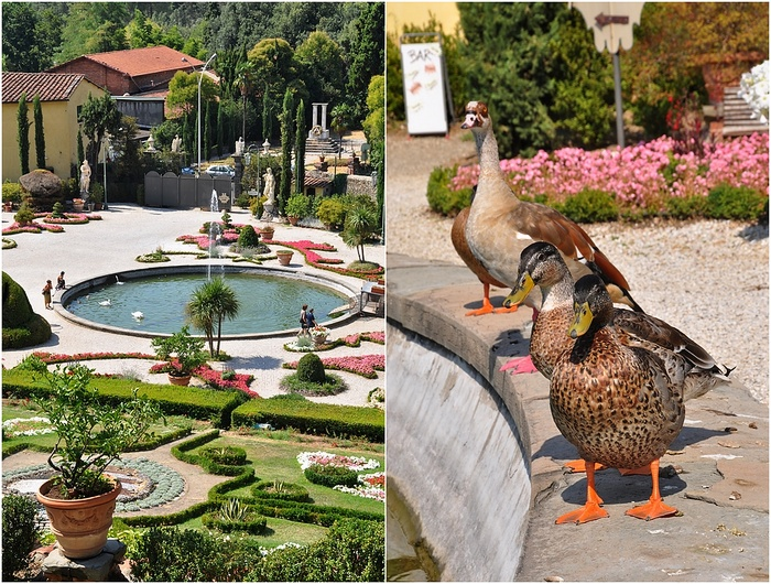 jardins Garzoni Collodi