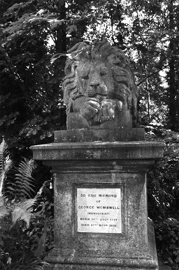 Nero the lion highgate