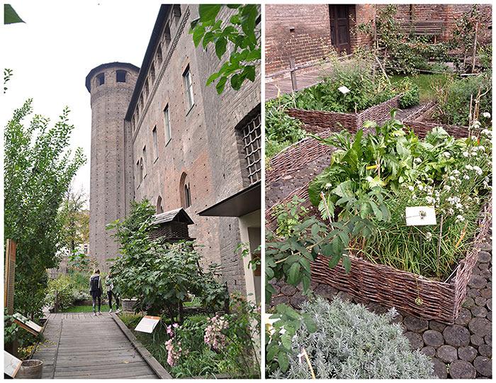 jardin chateau Turin