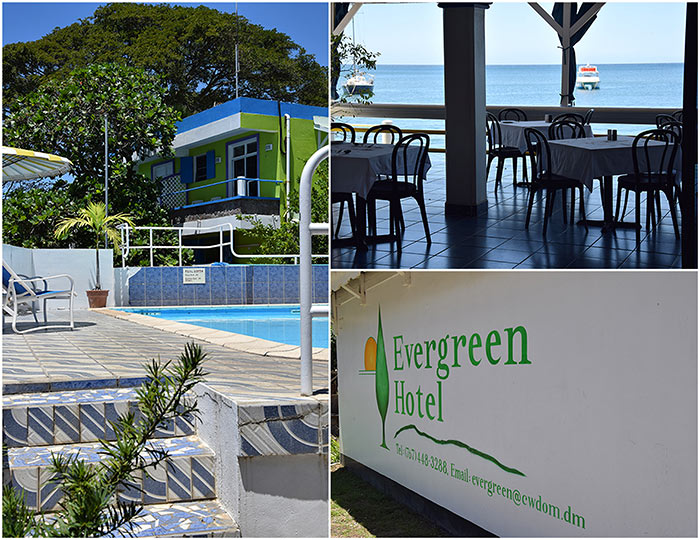 Dominica Evergreen Hotel