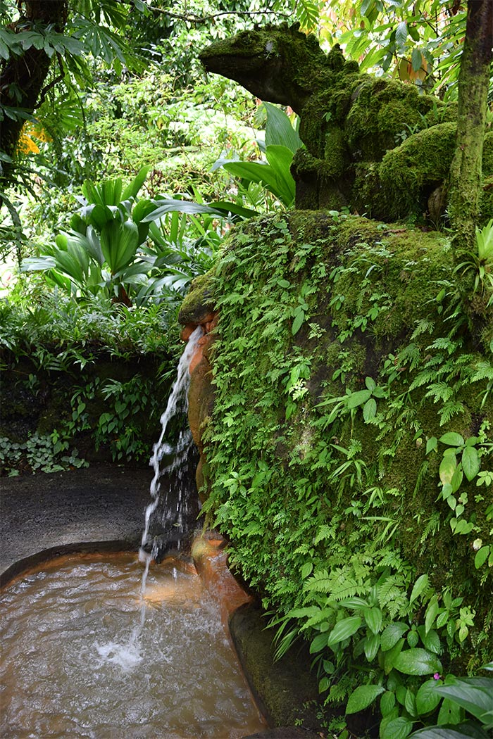 dominica papillote gardens