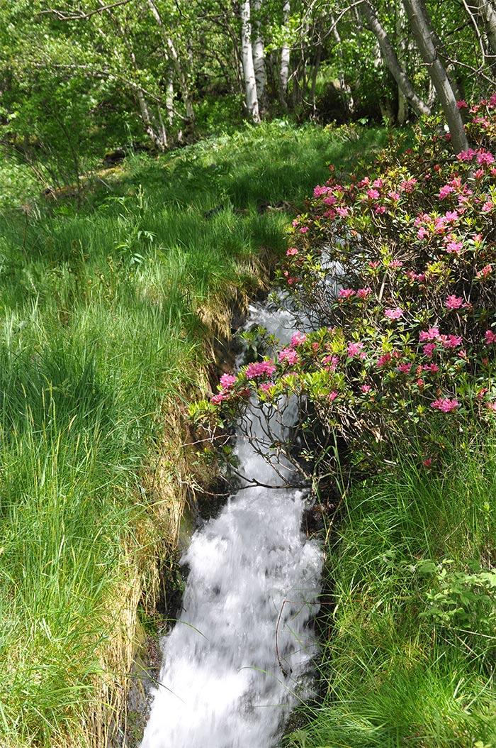 ruta del ferro Andorre