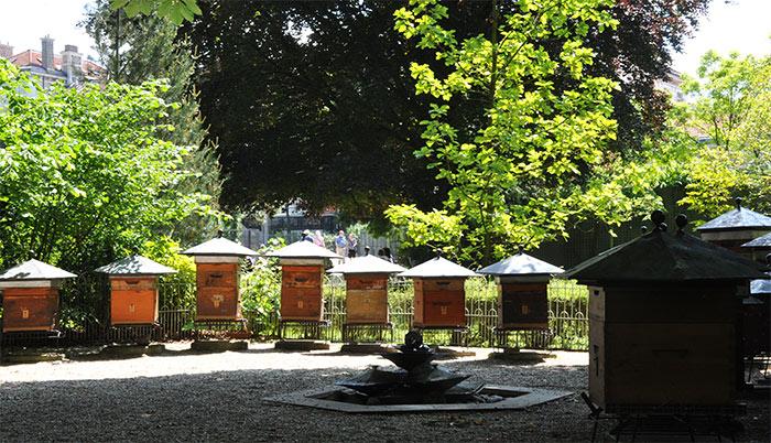 paris_jardinluxembourg_12