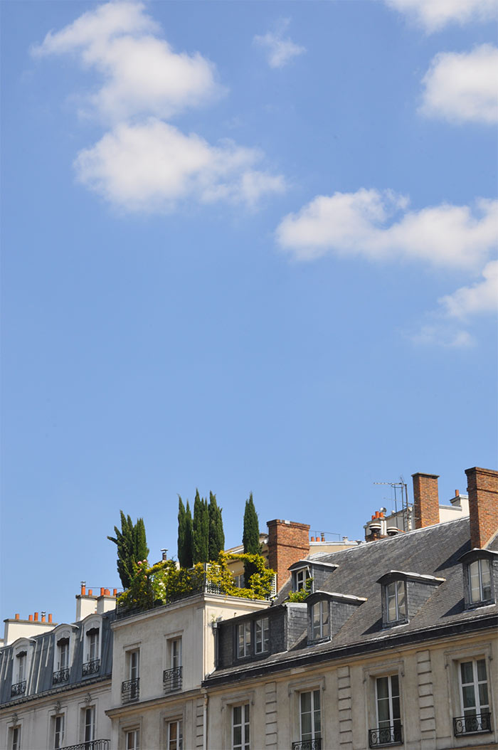 paris_jardinluxembourg_16