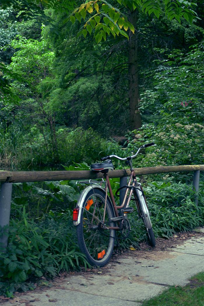Tiergarten bike