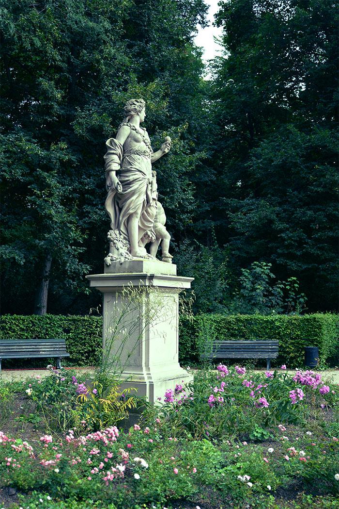 rose garden park tiergarten