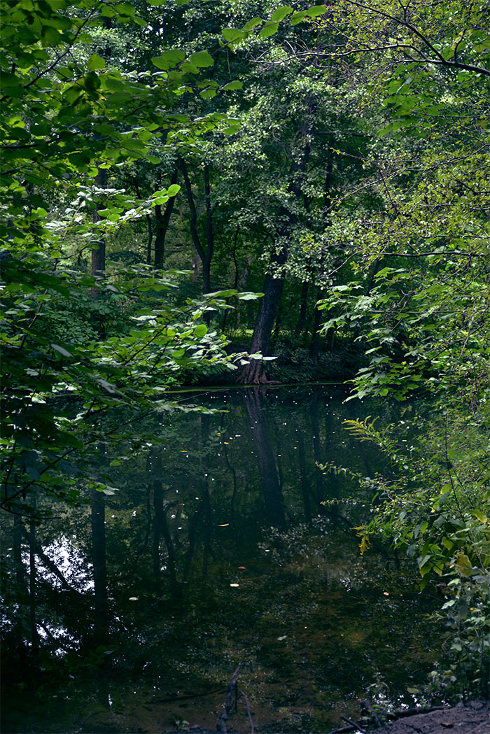 berlin parc de Tiergarten