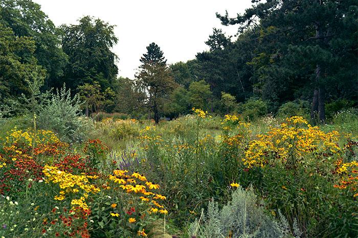 fleurs parc tiergarten