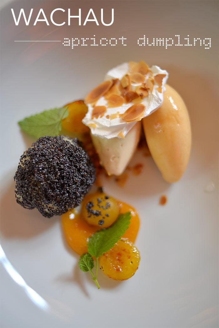apricot dumpling pauly saal
