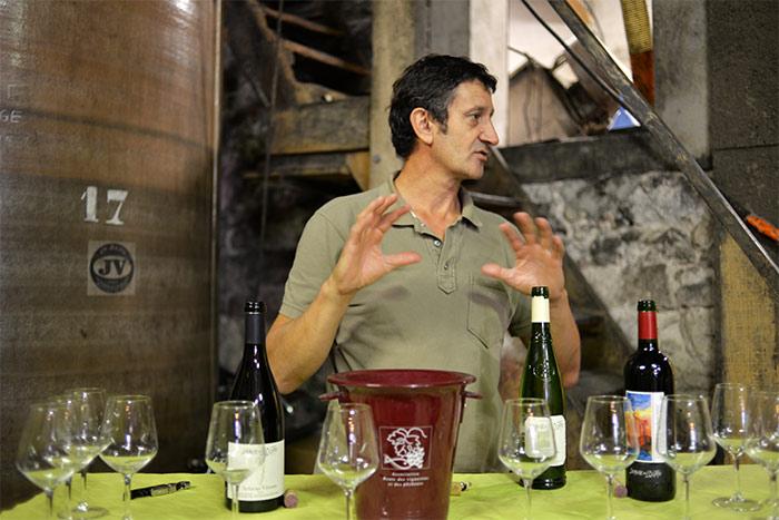 vigneron vin