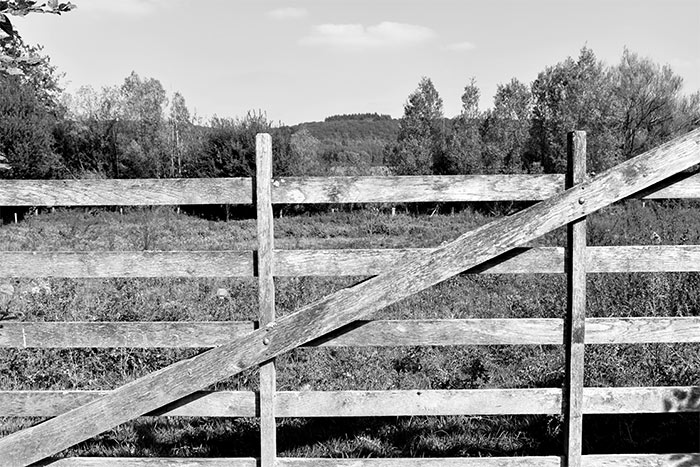 barrière champ