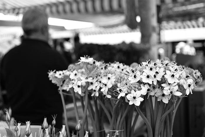 Une journ e nice a taste of my life - Restaurant la maison de marie nice ...