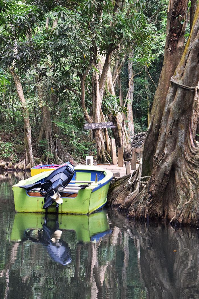 bateau indian river dominique