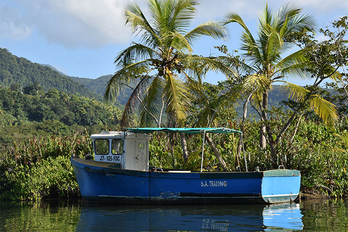 bateau indian river dominica