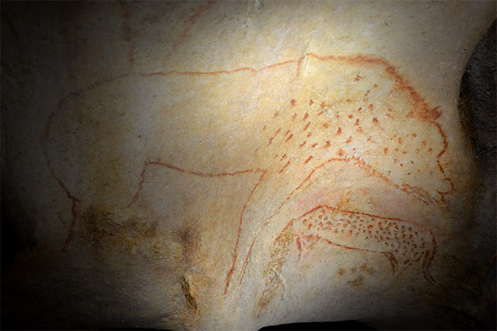 hyene panthere caverne pont arc