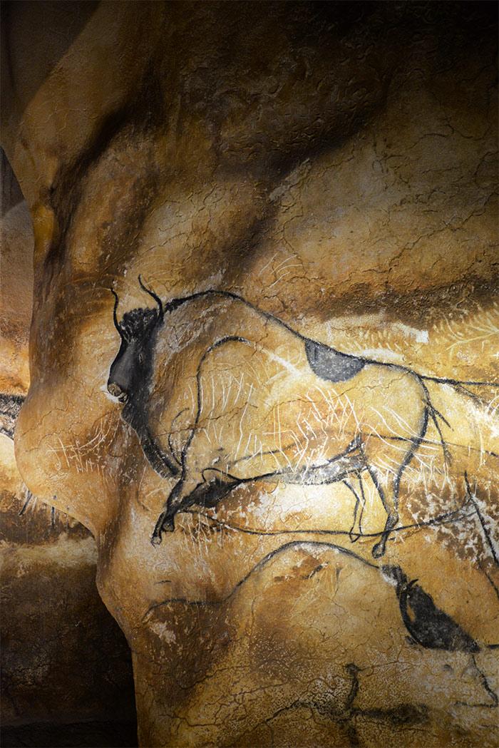 bison galerie caverne pont arc