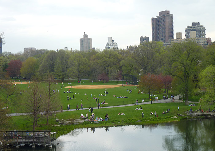 lac central park new york
