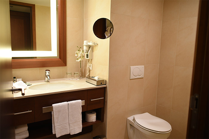 gand marriott salle bains