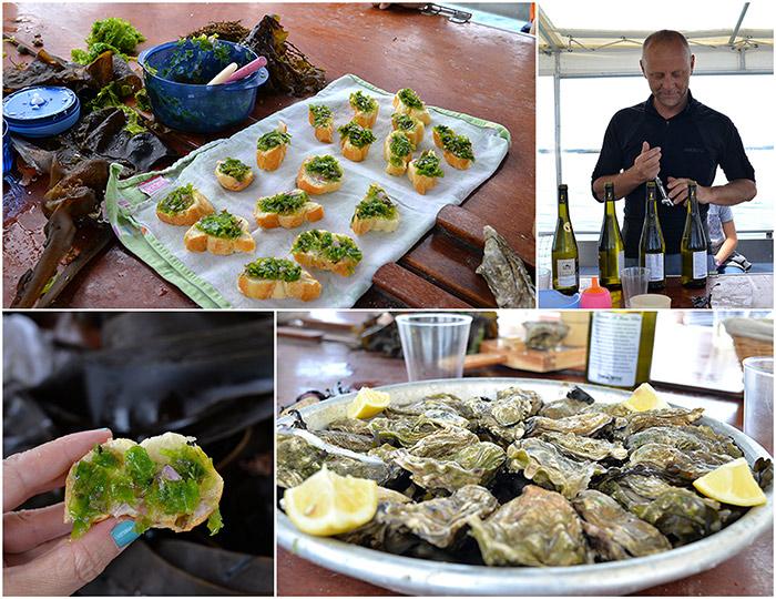 algues degustation rythme marées