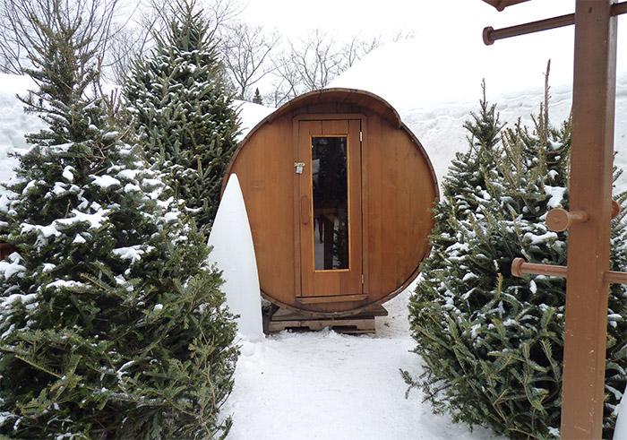 sauna hotel de glace quebec