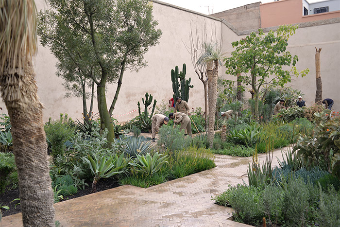 marrakech jardin secret exotic garden