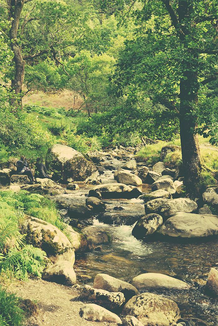 riviere glendalough