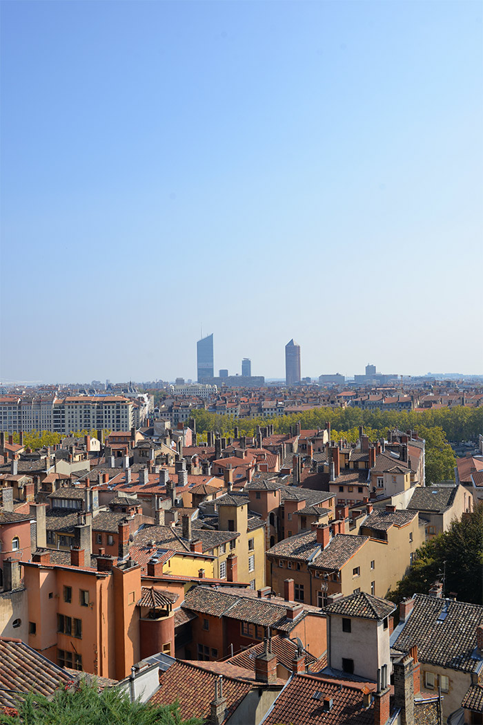 Lyon panoramic view