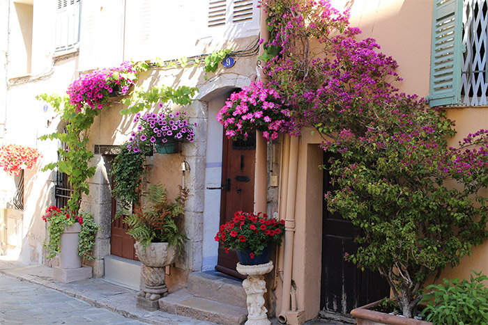 Cannes Suquet maison fleurs