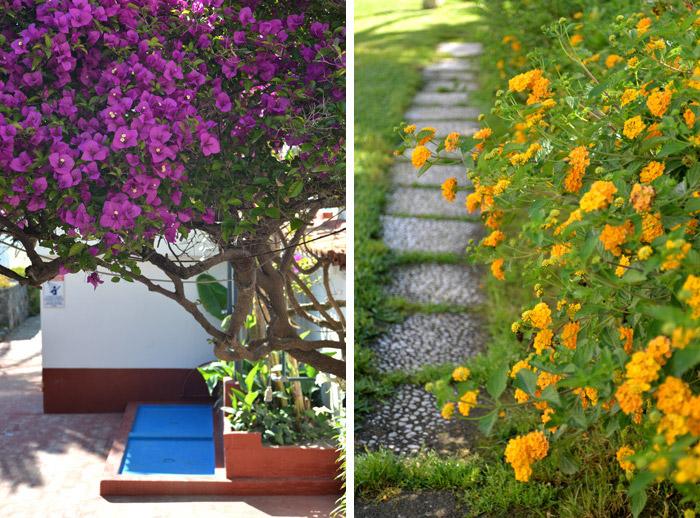 jardin hilton giardini naxos
