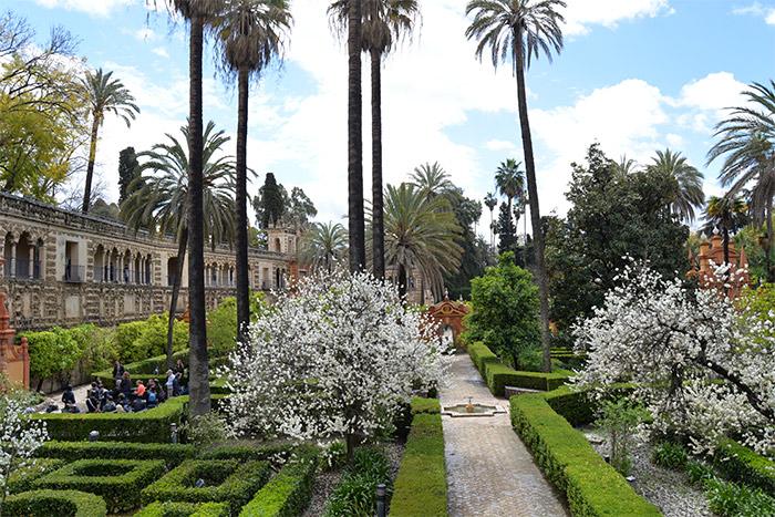 jardins alcazar seville