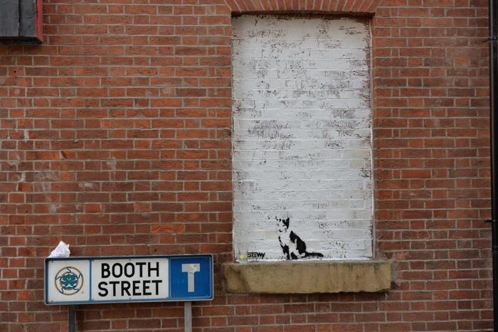 manchester street art stew