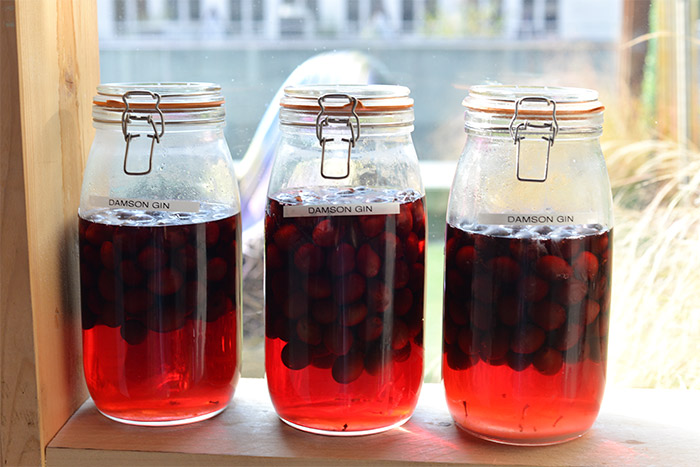 bocaux fruits rouges gin