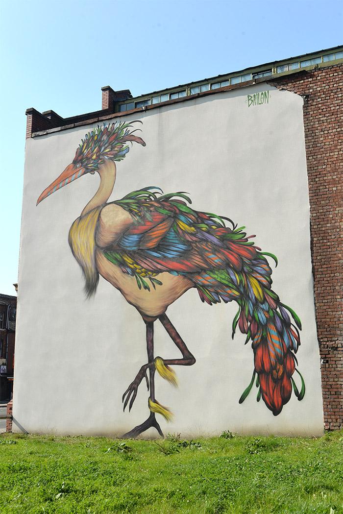 manchester bird street art mateus bailon
