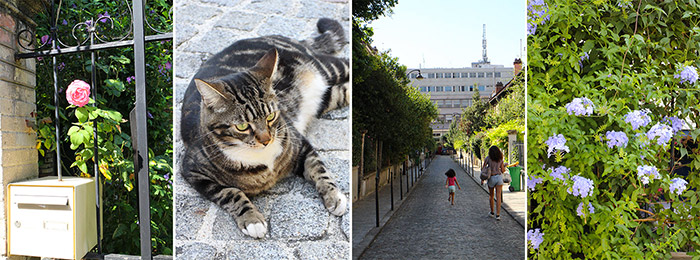 chat butte cailles paris
