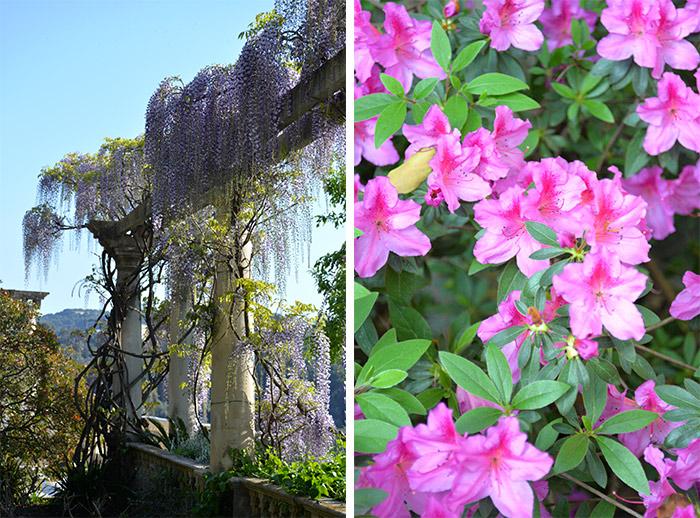 cote azur villa ephrussi gardens