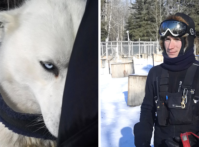 traineau chien musher sacre coeur