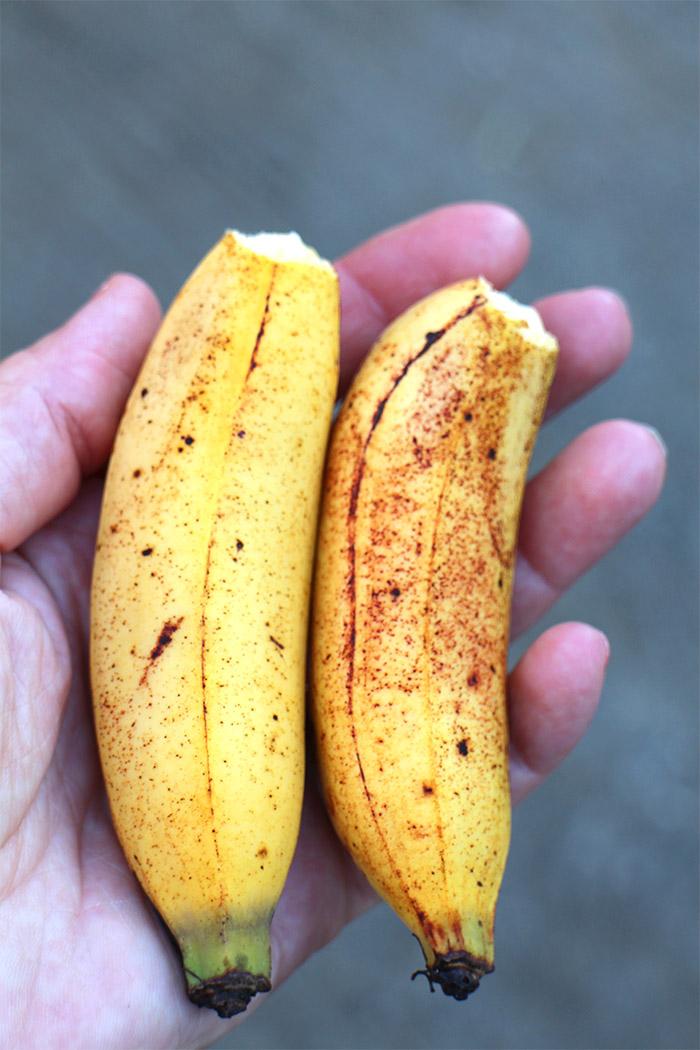 bananes philippines
