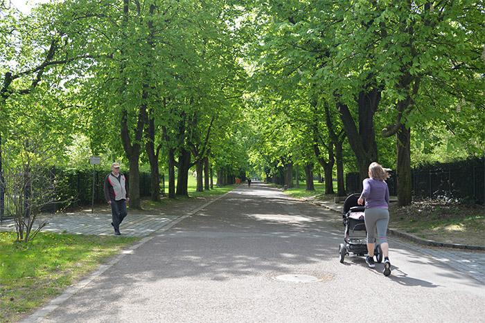 friedenspark leipzig