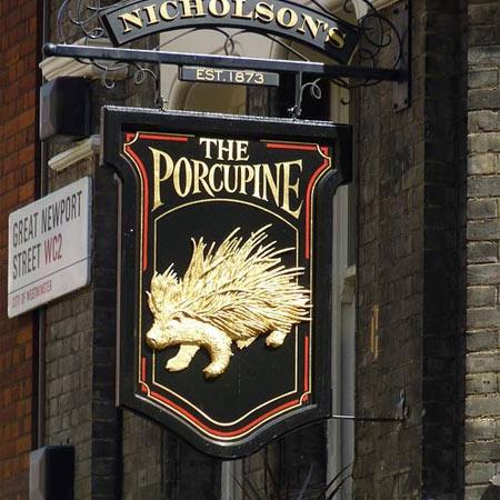 pub_porcupine_00