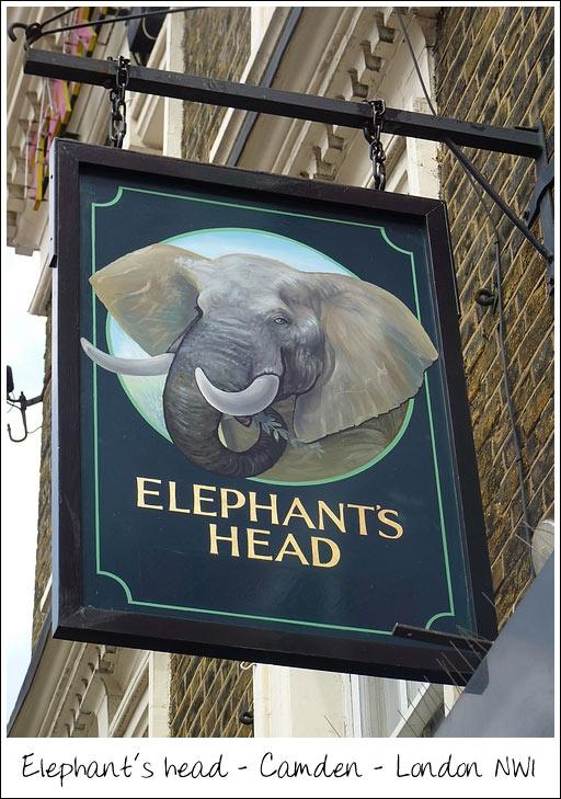 pub_elephantshead