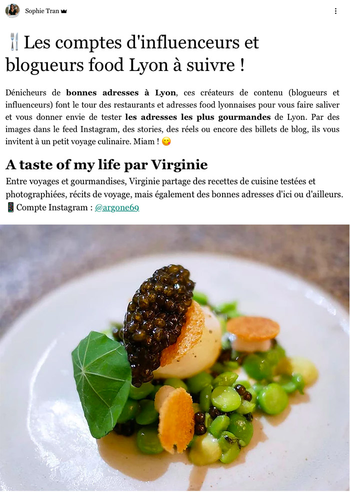 blog a taste of my life lyon can do it