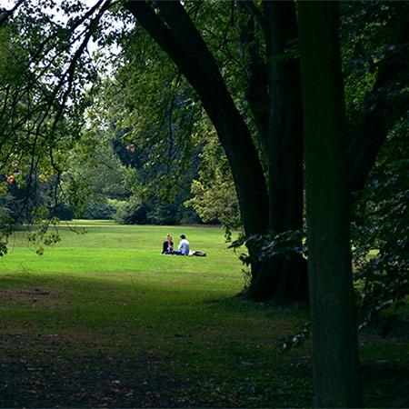 parc Tiergarten