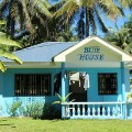 blue house general luna