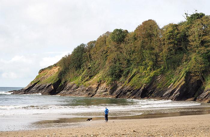 plage porthluney cornouailles