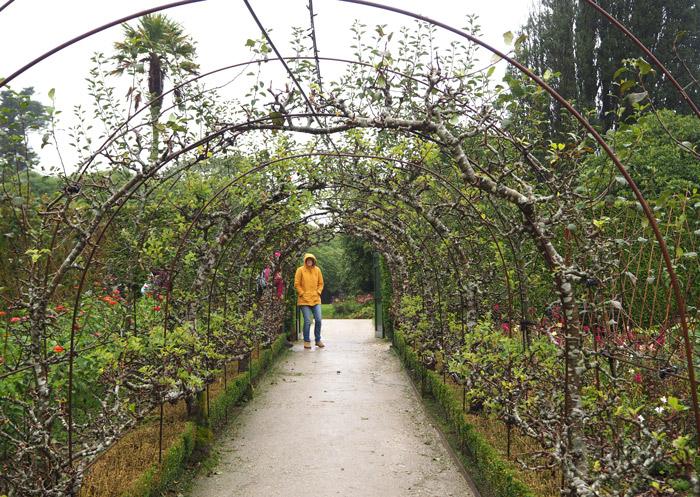Cornouailles jardins Heligan