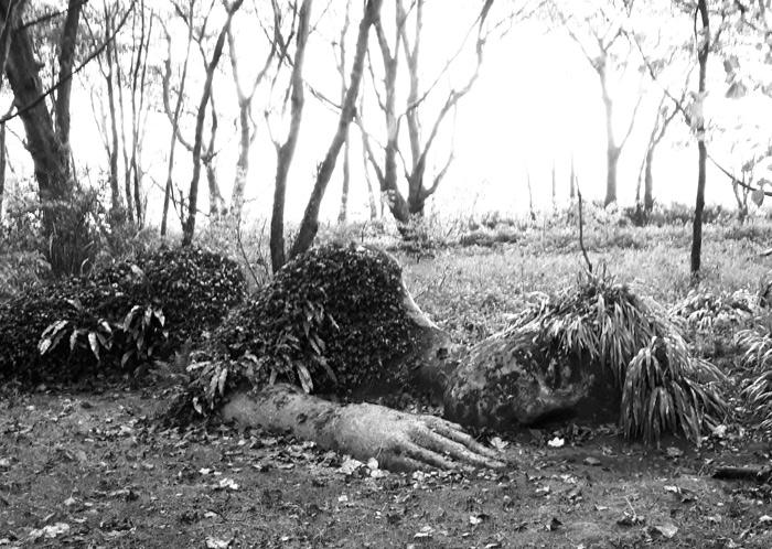 Mud Maid Heligan jardins