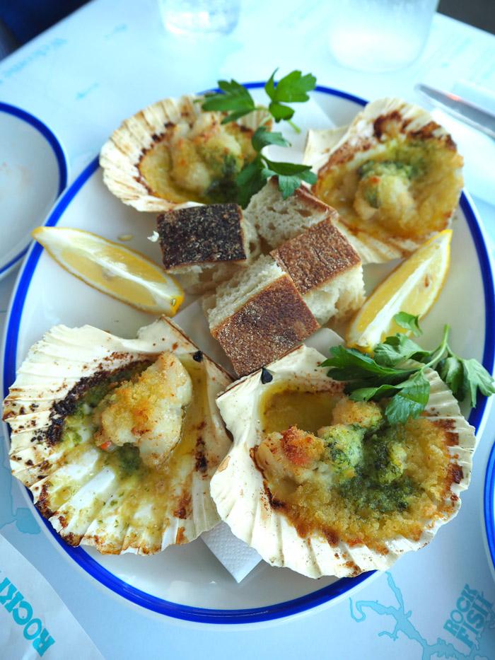 coquilles saint jacques rockfish